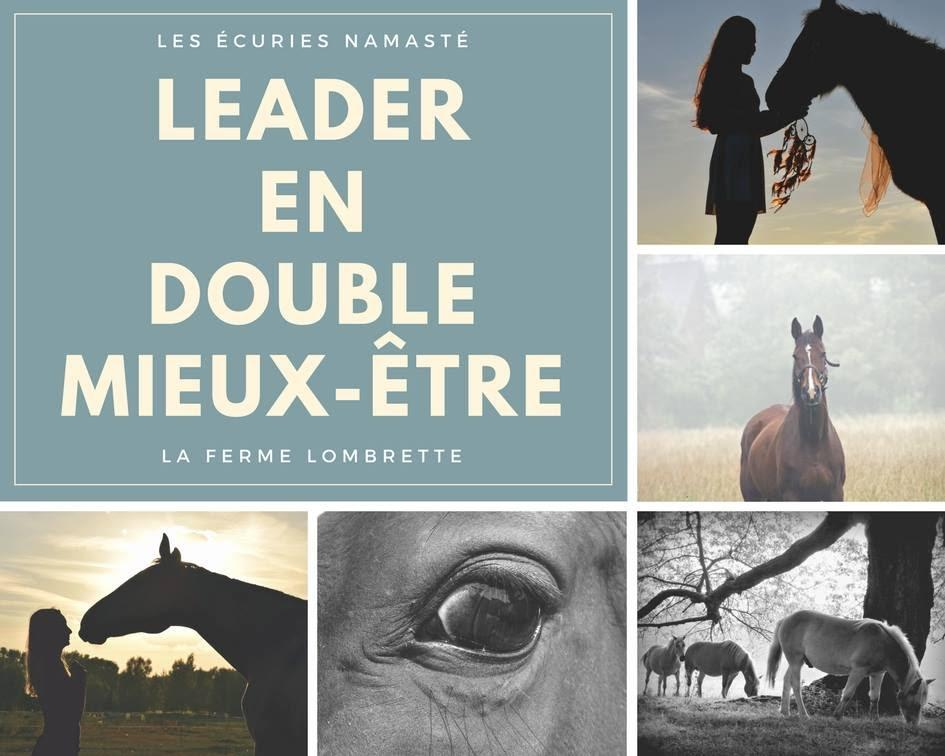 Leader en double mieux-être